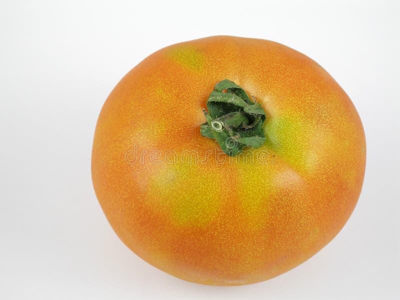 Download Tomato stock photo. Image of ripen, tomato, salad, fruit - 194636