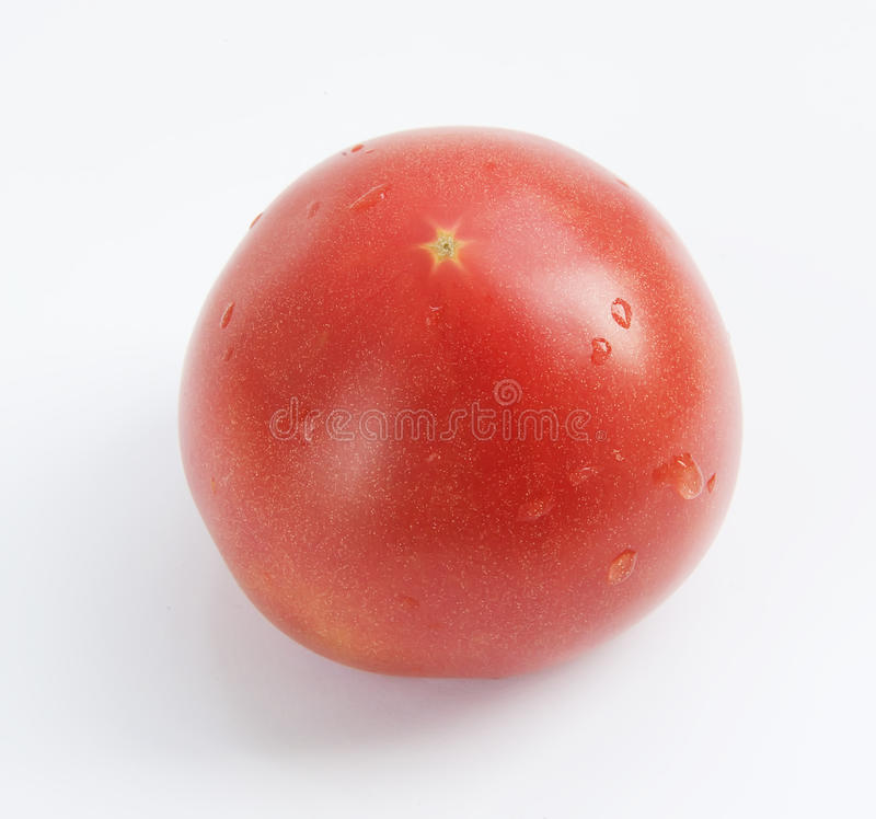Tomato. ) alias es the persimmon, the ancient name six YueShi XiBao three yuan rich nutrition, with special fruit flavor can raw food cooking processing  sauce royalty free stock image