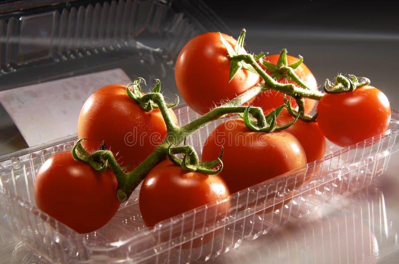Download Tomato stock photo. Image of health, vitamin, healthy - 22869688