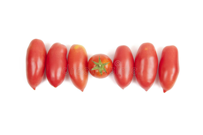 Download Tomato stock photo. Image of agriculture, ingredient - 26008050
