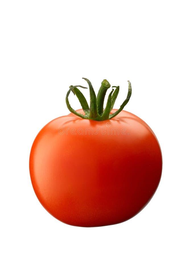 Download Tomato Stock Image - Image: 3338171