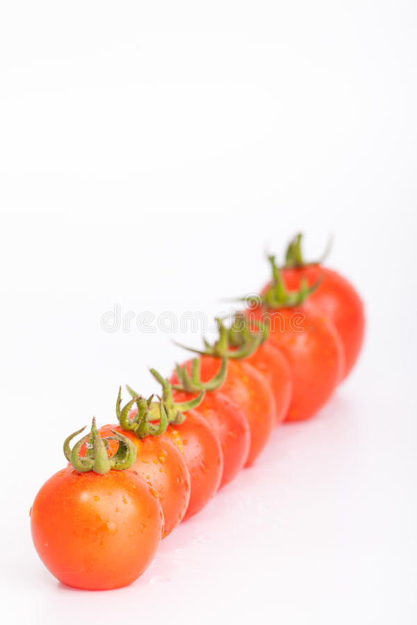 Download Tomato Stock Photography - Image: 37839282