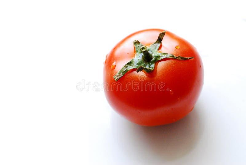 Download Tomato stock photo. Image of garden, vegetarian, salad - 5583012