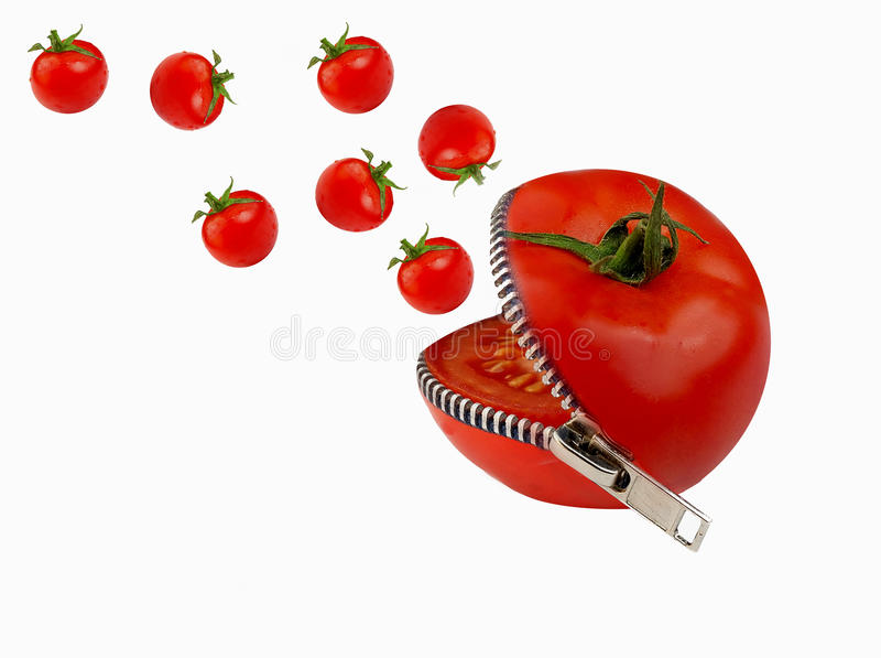 Download Tomato editorial photography. Image of lifestyle, eating - 9600987