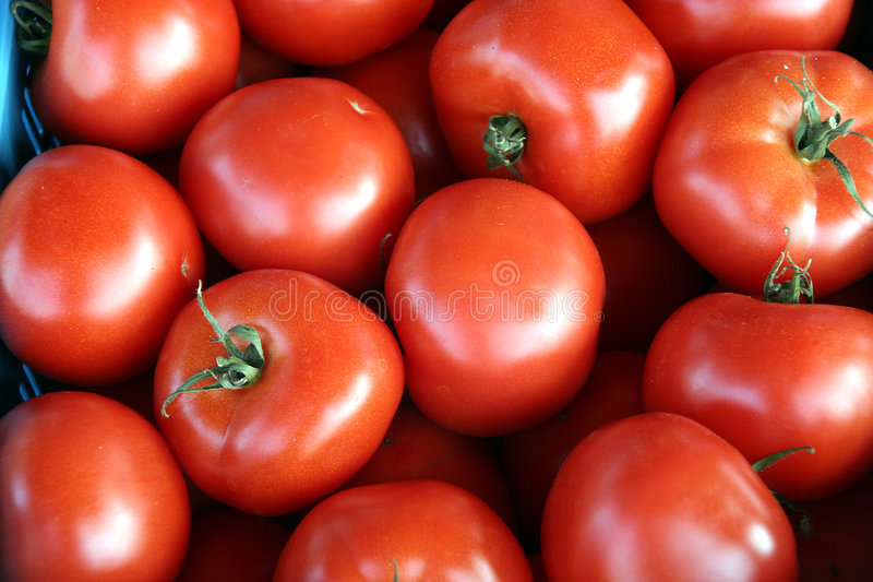Download Tomato Background Royalty Free Stock Images - Image: 224419