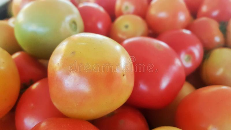 Tomato background, Fresh Organic Tomatoes Texture, Vegetable royalty free stock images