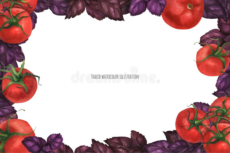 Tomato and Basil landscape frame. Traced vector, Tomato and Basil landscape frame royalty free illustration