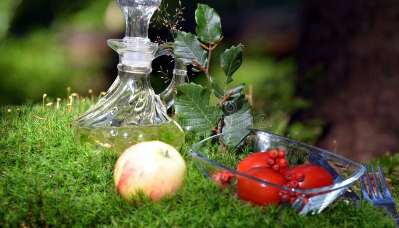 Tomato bowl moss picnic food
