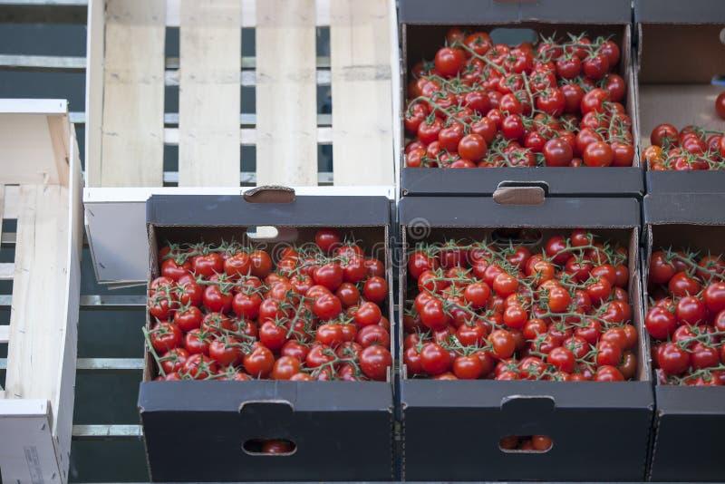 Tomato in box in Borough market in London. Tomato in the box in Borough market in London stock photography