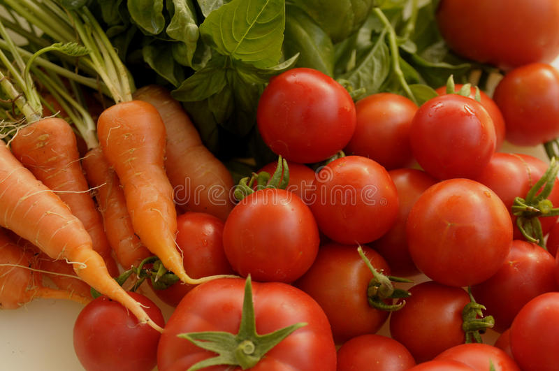 Tomato, carrots and basil 2 royalty free stock photos