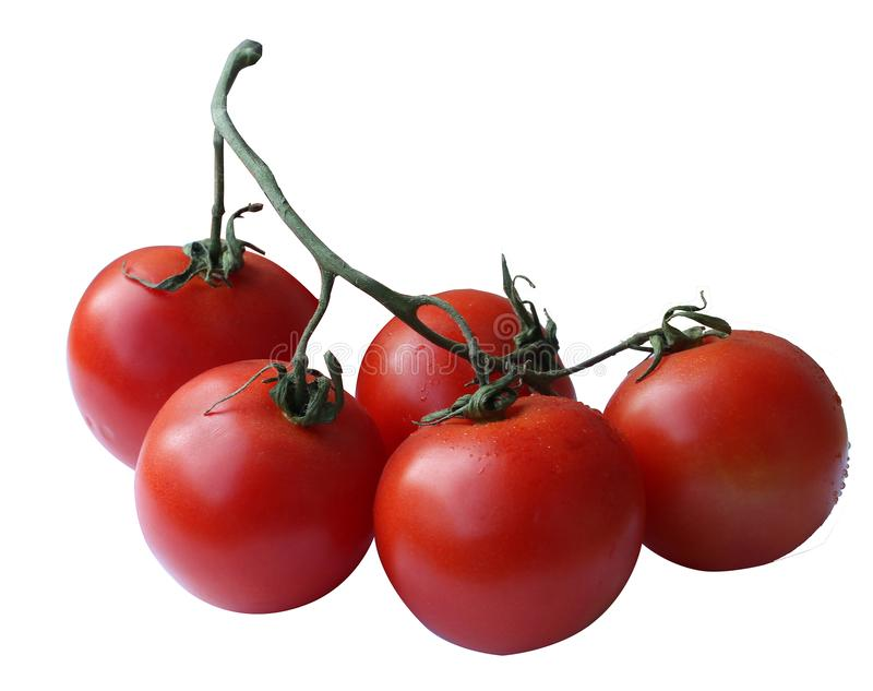 Tomato, cherry, tomatoes, isolated, top, view, white, background, ripe, red, fresh, nature, vine, green, color, bunch, food, close royalty free stock images