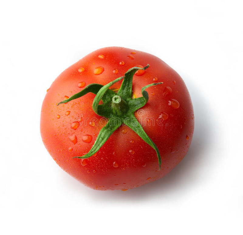 Tomato with drops royalty free stock photo