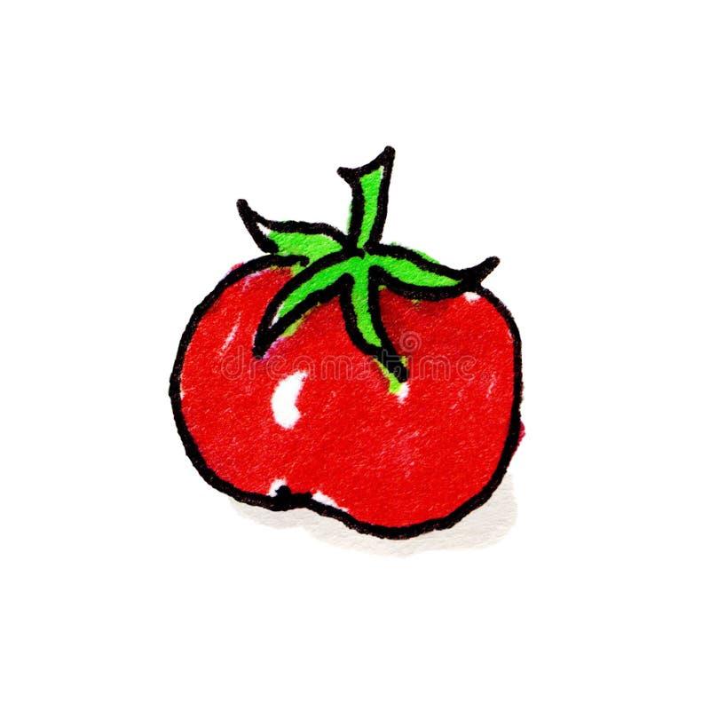 Download Tomato Freehand Illustration Stock Illustration - Image: 27025137