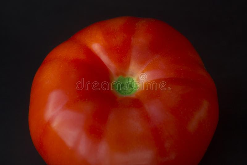 Tomato from the garden royalty free stock photography