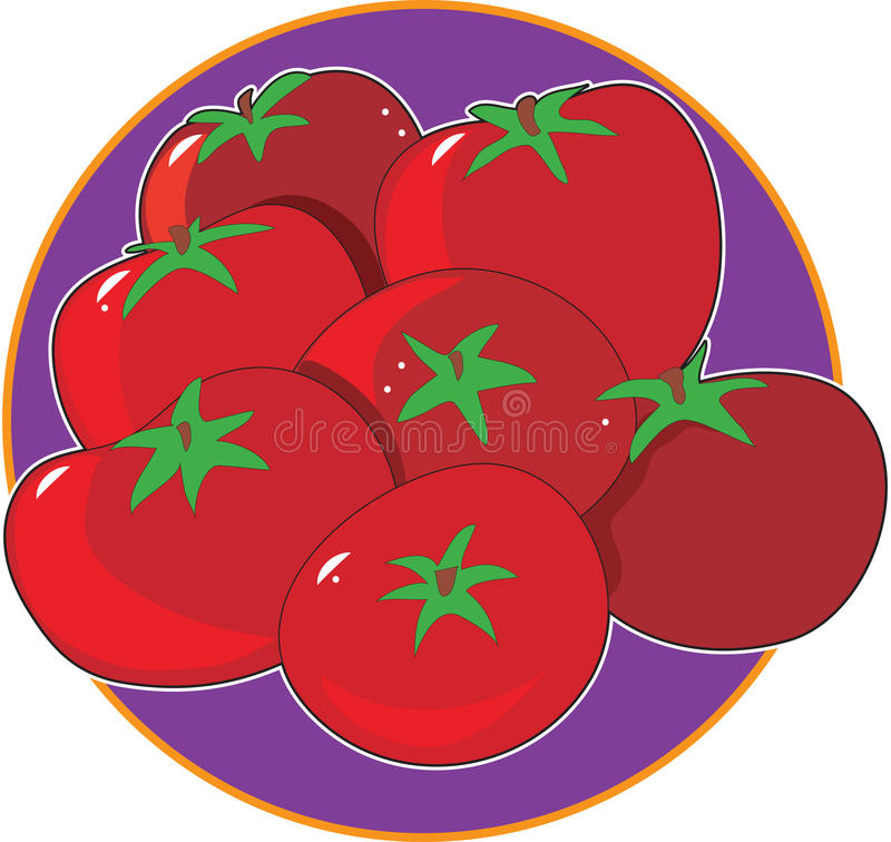 Download Tomato Graphic stock vector. Image of produce, illustration - 19885137
