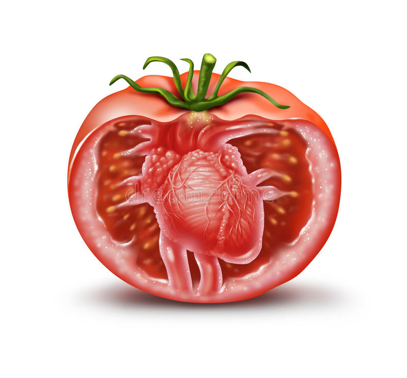 Tomato Heart Health Icon. Tomato heart health medical icon as a fruit and vegetable healthcare symbol for natural antioxidant and cardiovascular nutrition vector illustration