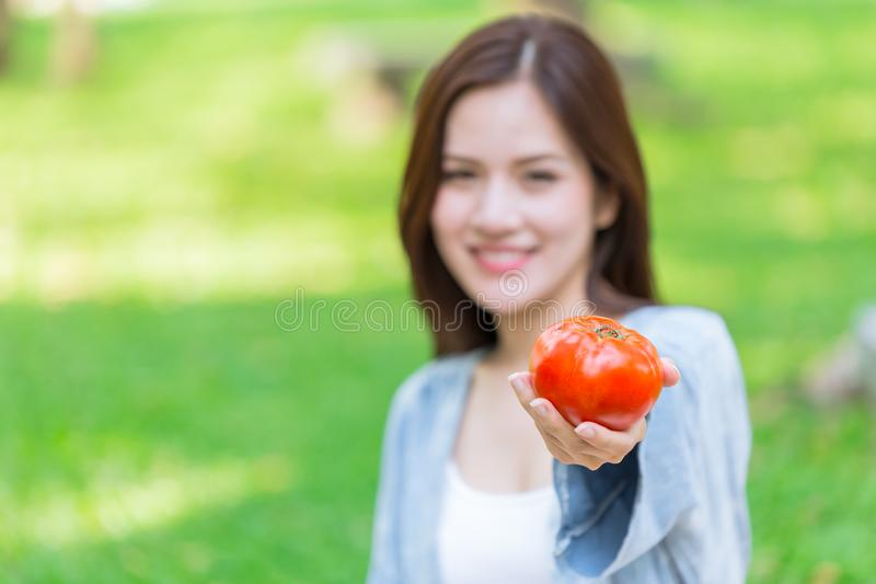 Tomato high antioxidant lycopene vitamin C for girl stock photography