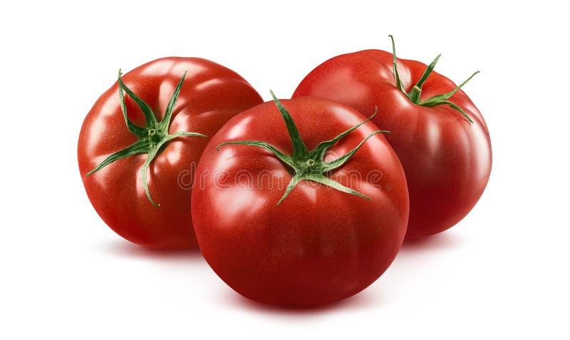 3 tomato horizontal composition on white background stock photo