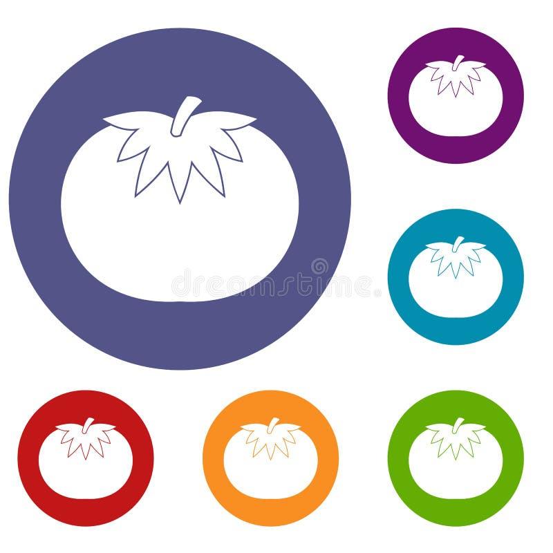 Tomato icons set royalty free illustration