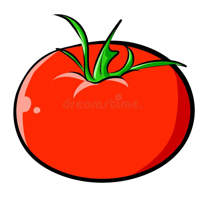 Hand-Drawn Tomato Illustration Clipart royalty free stock images