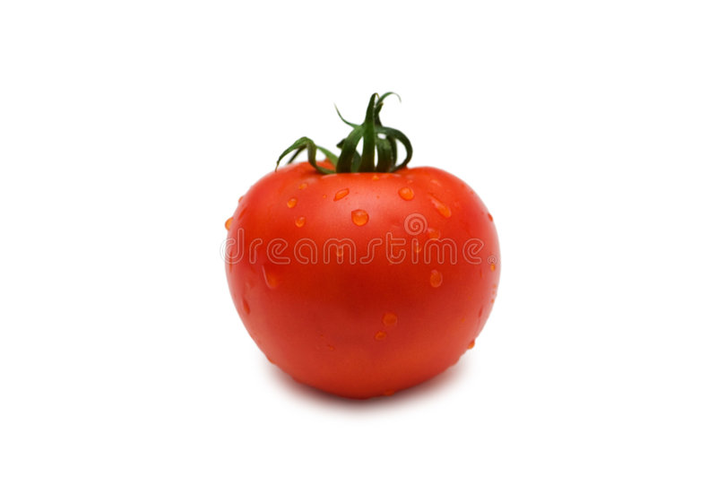 Tomato isolated on white - shallow depth of field royalty free stock photos