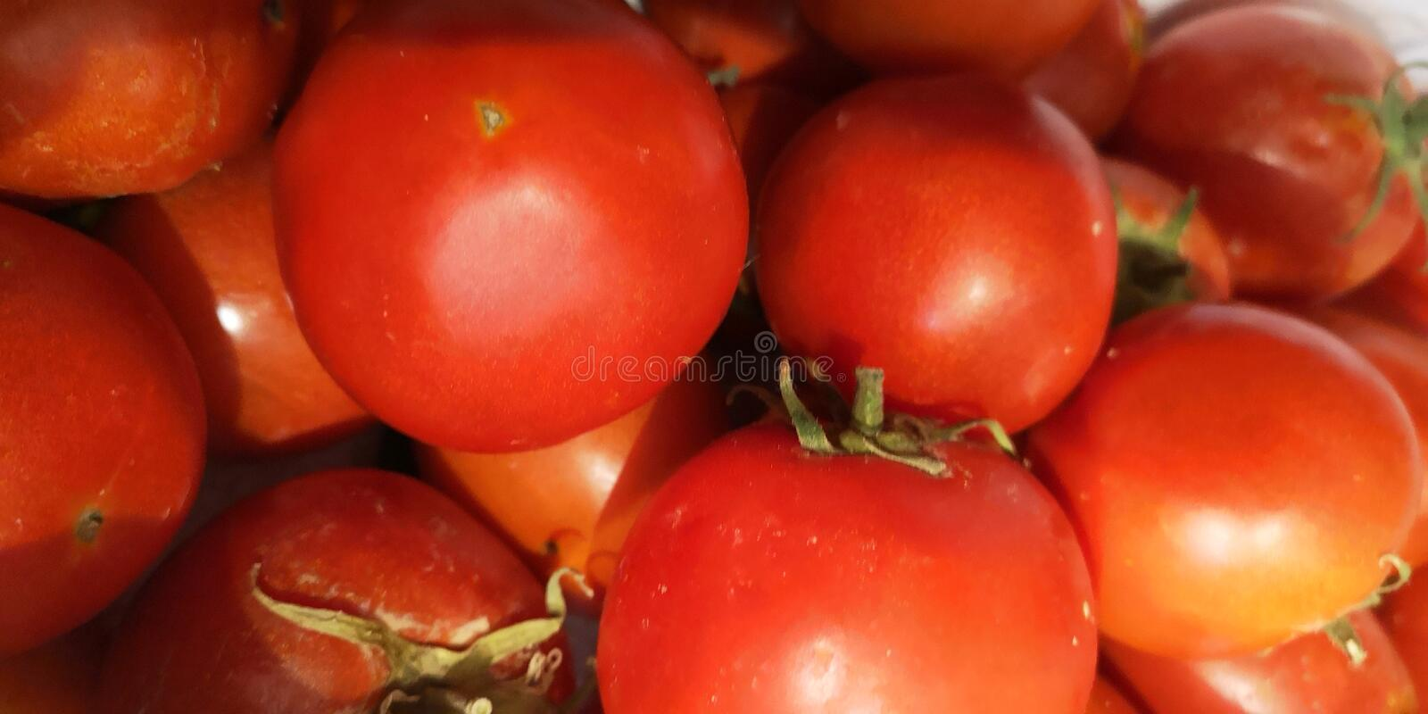 Tomato so many dish you can make of this fruit stock image