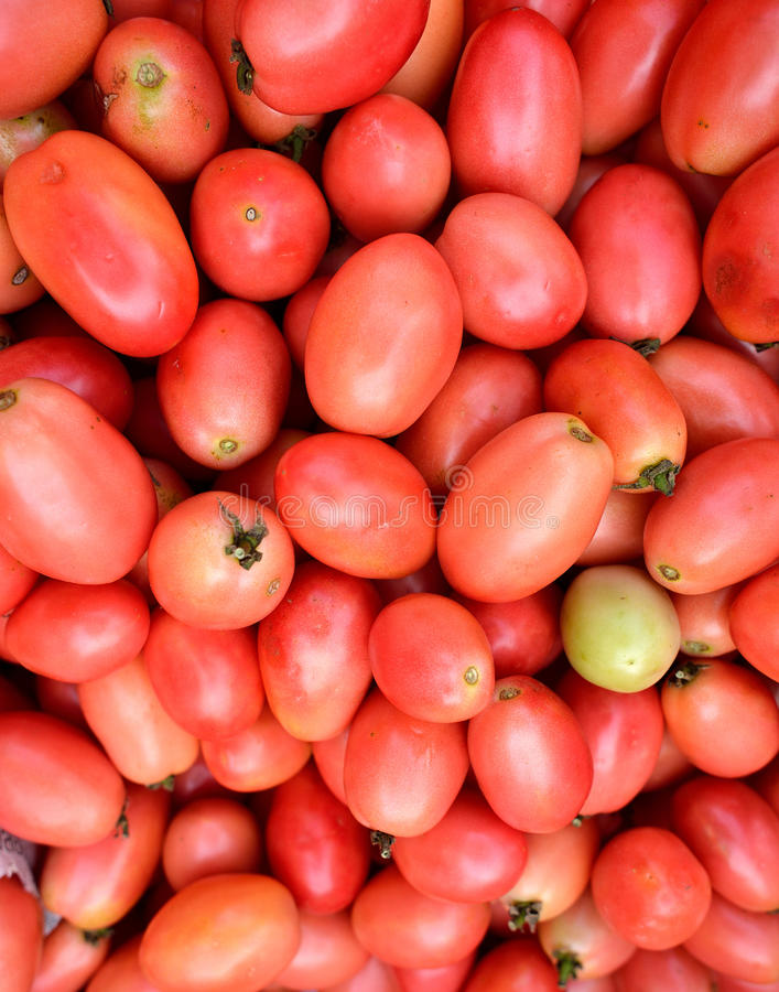 Download Tomato stock photo. Image of colourful, agriculture, market - 33786170