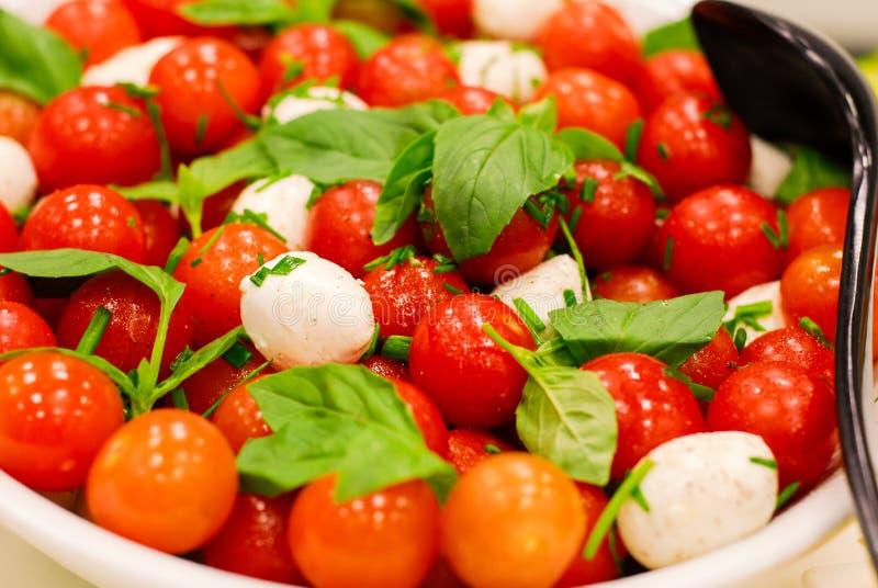 Tomato and mozzarella salad royalty free stock photography