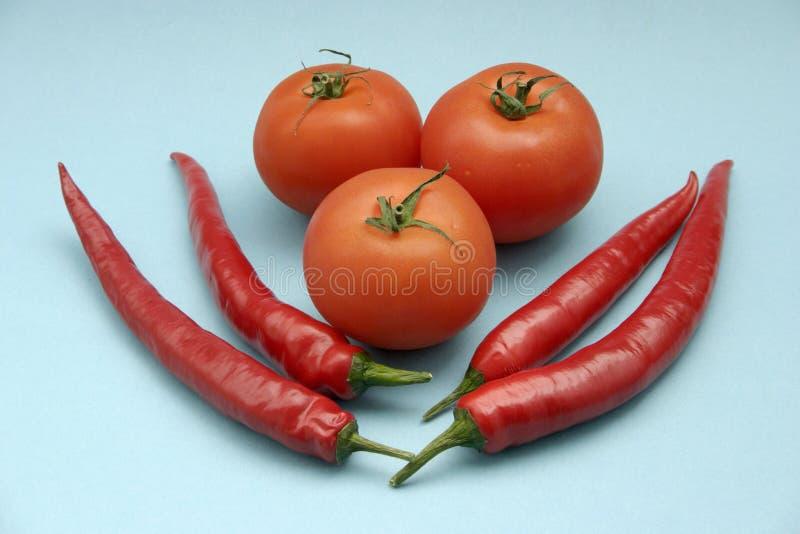 Tomato and paprika. On blue background stock photography