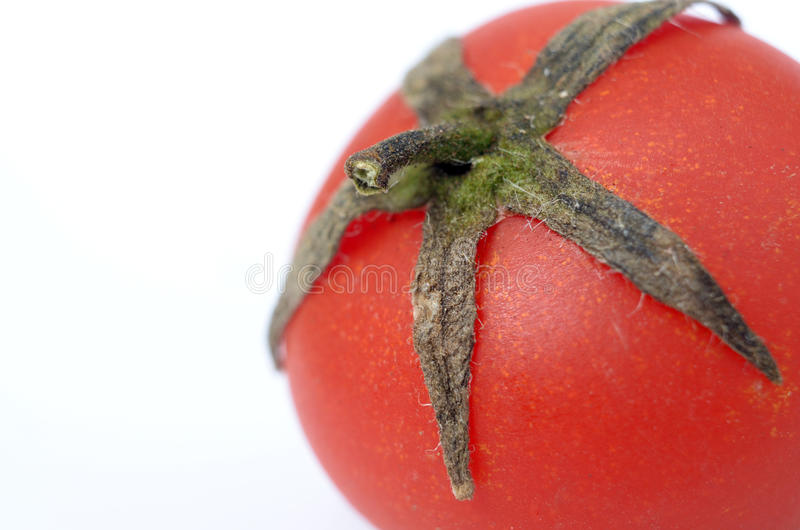 Tomato. Picture of a macro tomato stock images