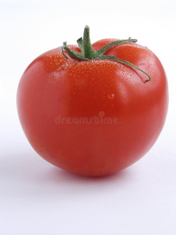 Tomato portrait I stock images