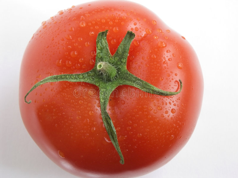 Download Tomato Portrait III Royalty Free Stock Images - Image: 895529