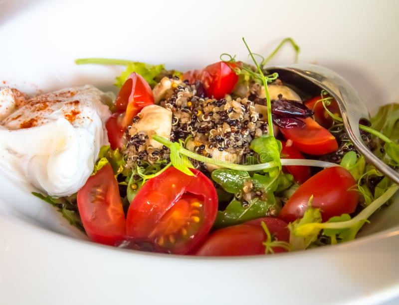 Tomato salad with herbs, mayonnaise and mushrooms in a snow-white plate stock images