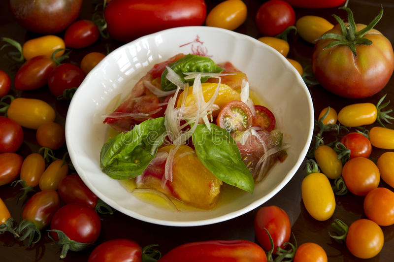 Tomato salad with tomatoes royalty free stock photography