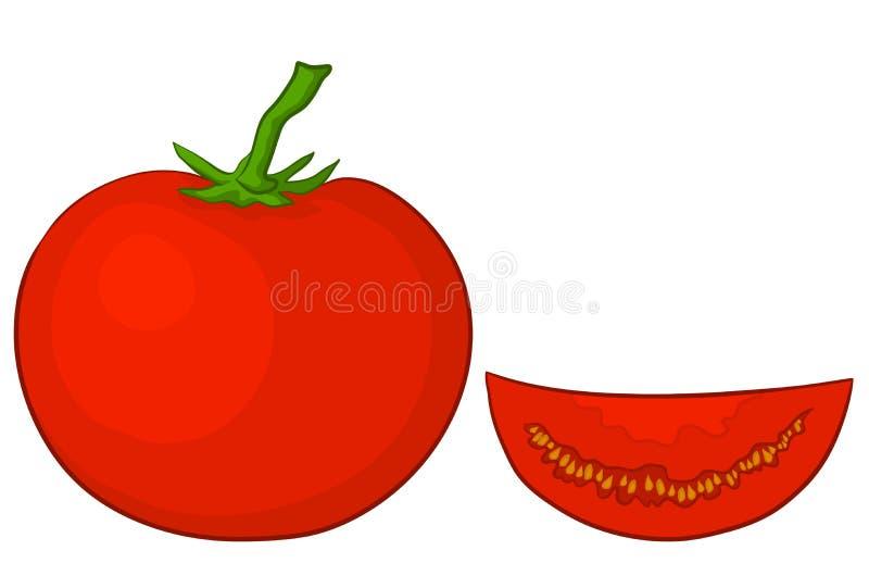 Tomato And Segment Stock Image