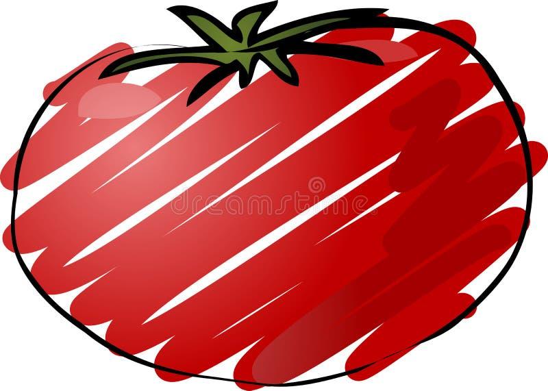 Tomato sketch royalty free illustration