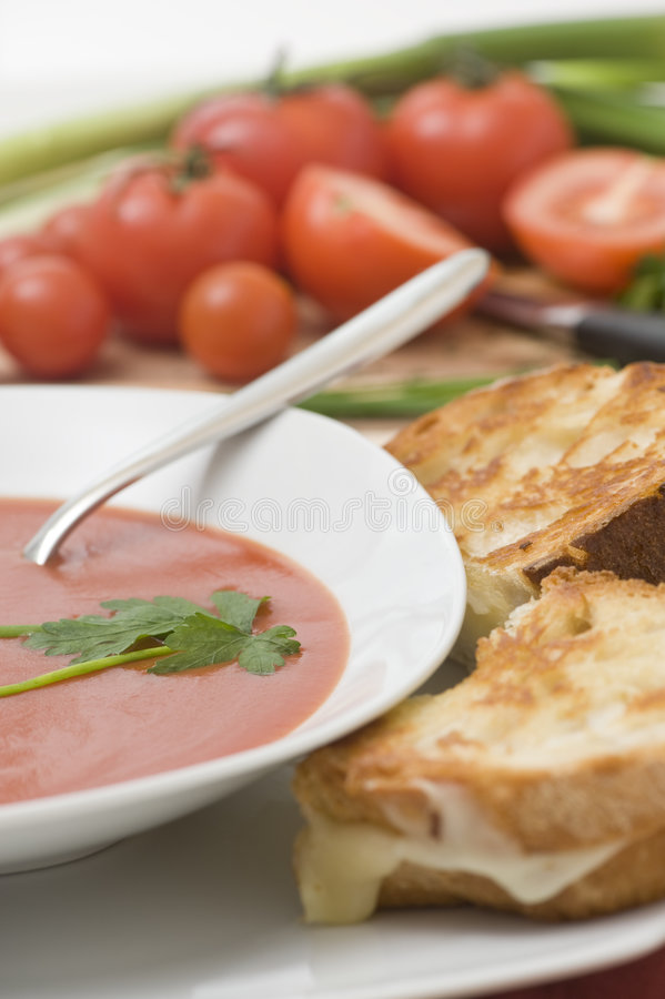 Download Tomato Soup stock photo. Image of herb, white, onion, fruit - 7489324