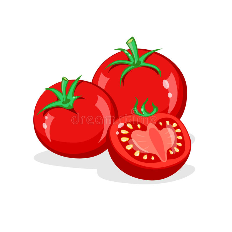 Tomato. Whole and half cut tomatoes. Vector cartoon illustration. Vegetables pile Isolated on White background stock illustration