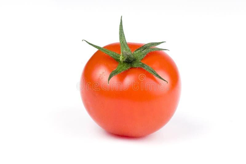 Tomatoe lizenzfreie stockbilder