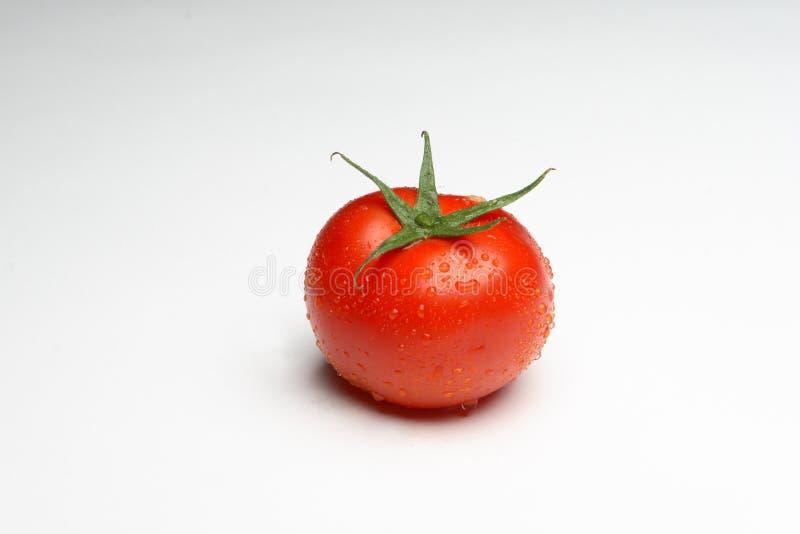 tomatoe zdjęcie royalty free