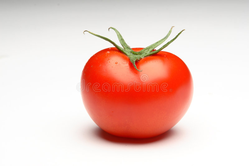 Tomatoe photo stock