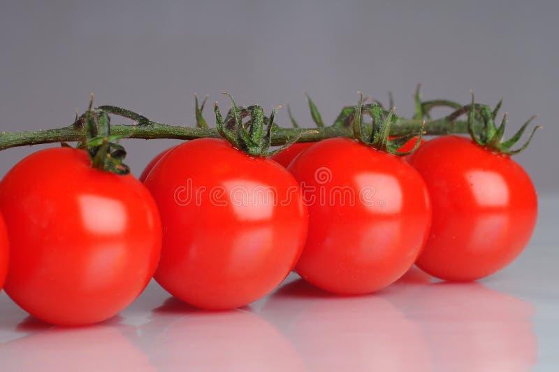 Tomatoe da cereja imagem de stock