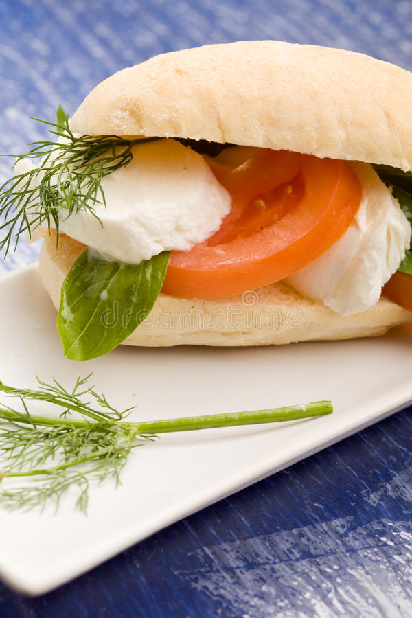 Tomatoe Mozzarella-Sandwich lizenzfreie stockbilder