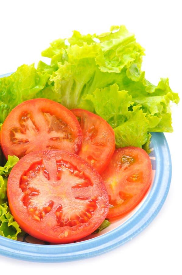 Tomatoe och grönsallat royaltyfri bild