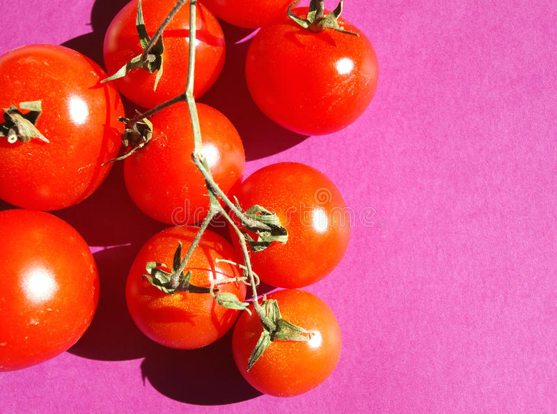 Download Tomatoes stock photo. Image of mediterranean, sauce, cooking - 12900380