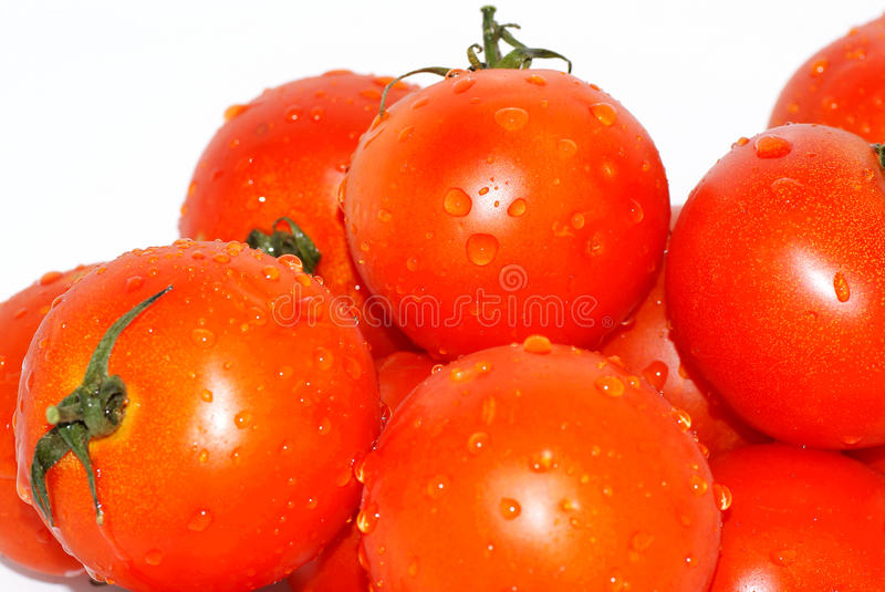 Download Tomatoes. stock image. Image of clean, foetuses, backround - 14793561