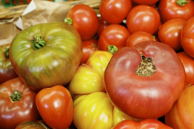 Download Tomatoes stock image. Image of garden, fresh, cook, culinary - 14853697