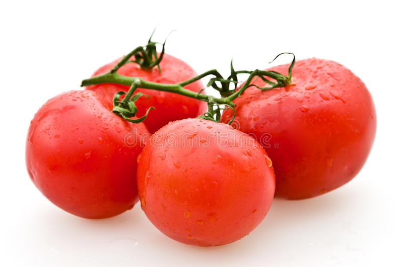 Download Tomatoes stock photo. Image of eclogic, food, bunch, background - 14956986