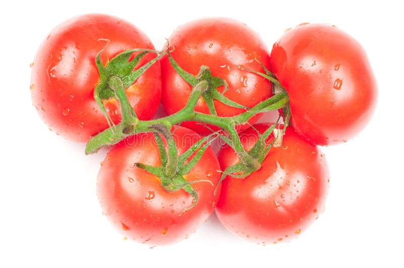 Download Tomatoes stock image. Image of isolated, vegetable, olympic - 15690045