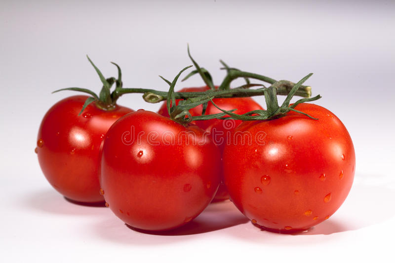 Download Tomatoes stock image. Image of agriculture, flavour, salade - 18354031